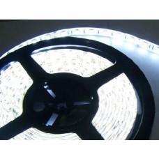 Fita LED Branco Frio  (5050) - IP65 (Resistente a água) - Rolo com 5 metros - 24 volts - 24v - para Caminhão