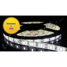 Fita LED Branco Frio (5630) - IP65 (Resistente a Água) - Rolo com 5 metros