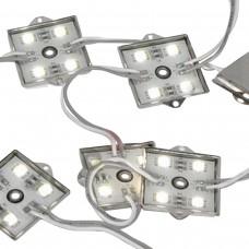 Módulo com 4 leds 5050 - Branco Frio - 80 lúmens - IP65 - 12 volts (unitário)