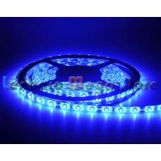 Fita LED Azul SMD 3528 - 60 Leds por metro - IP65 A prova d'água - 5 metros